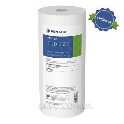 Pentair Картридж для холодной воды DGD-2501- Фото№1